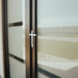 exterior door with glass - handle detail